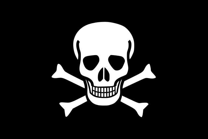 bandera pirata hablando de la seguridad en el software de taller mecánico